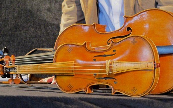 Viola pomposa - Wikiwand